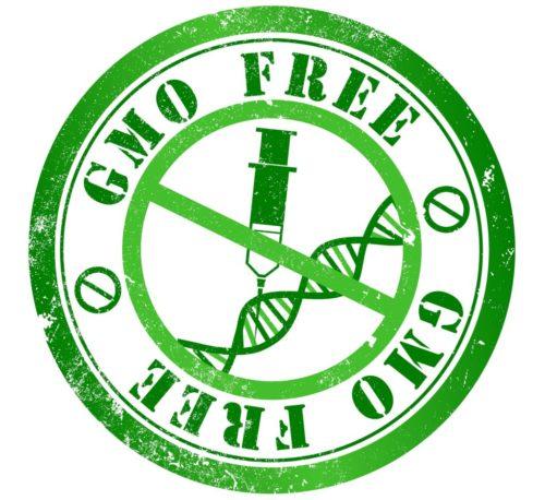 bez GMO, VLOG, GMP+ MI105, PIM, wdrożenia, szkolenia, audyty